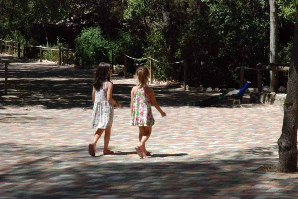 Paseando por el Zoo de Guadalajara