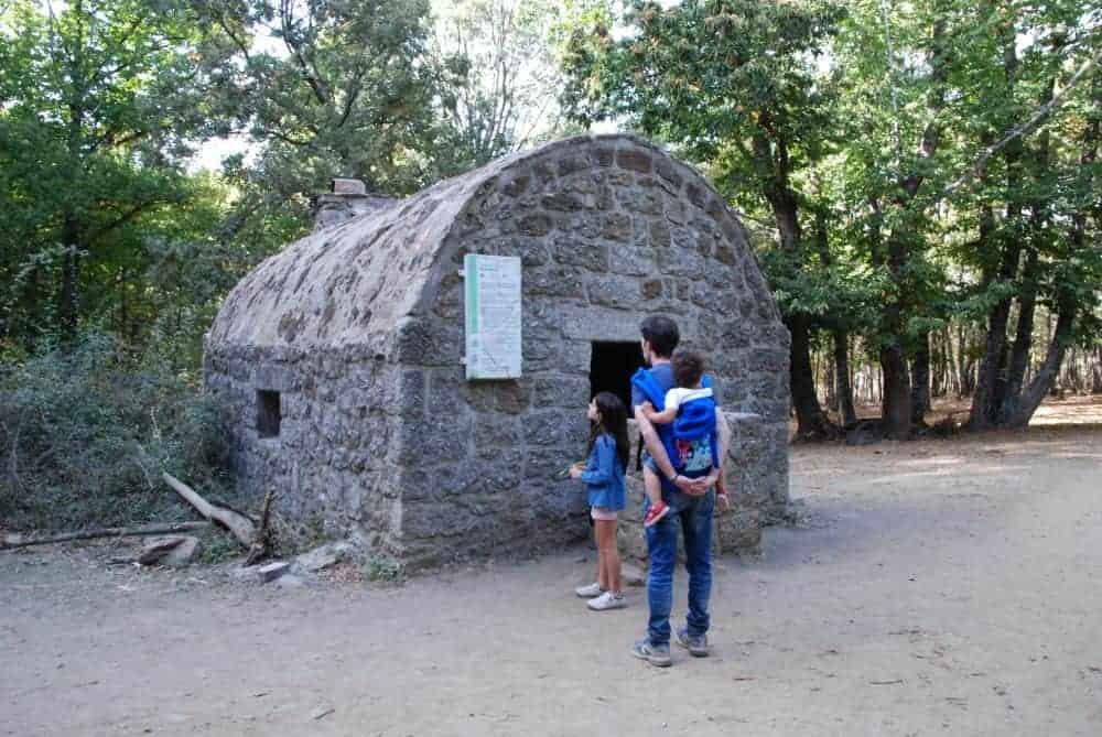 Refugio en el castañar de El Tiemblo