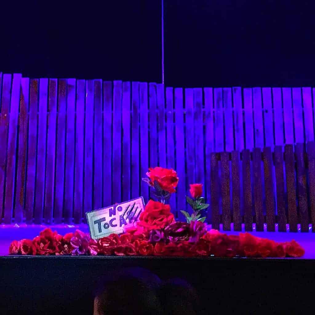 Rosas puestas en el escenario en La Bella y la Bestia el musical, de Mundiartistas