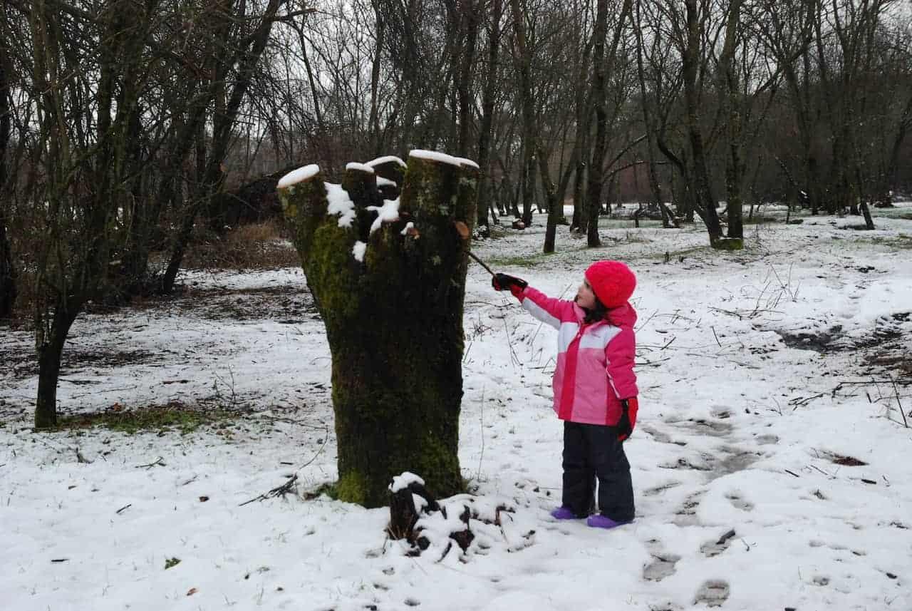 La peque con un palo moviendo la nieve que hay en el tronco de un árbol