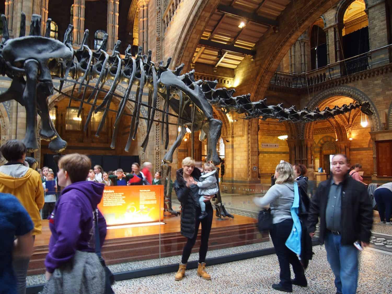 museos con niños, museo de historia natural de Londres