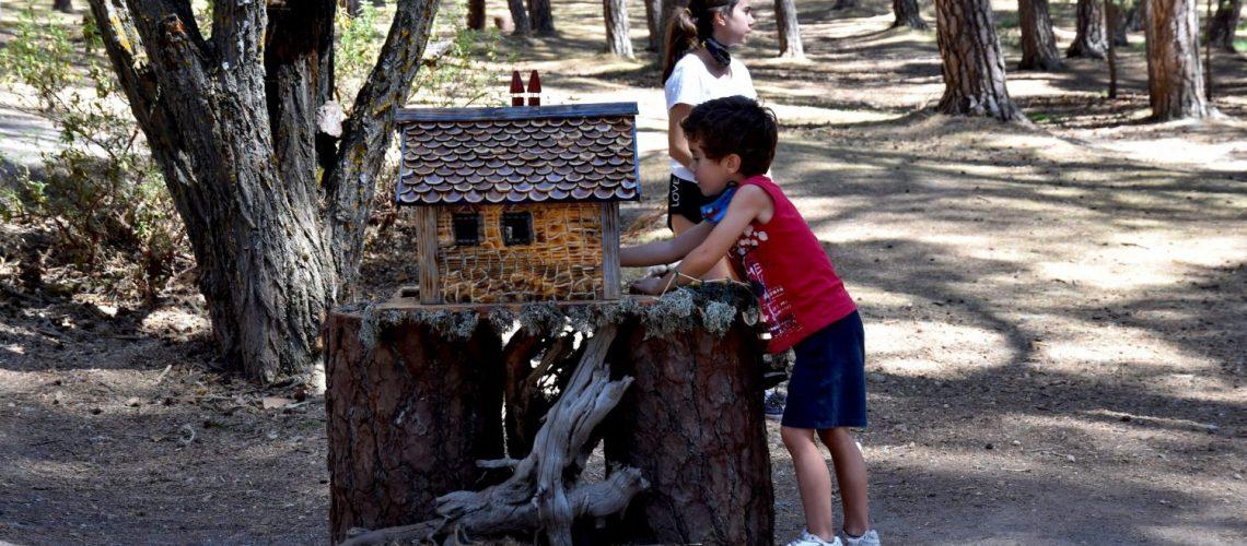 El Bosque Mágico de San Leonardo de Yagüe, Soria